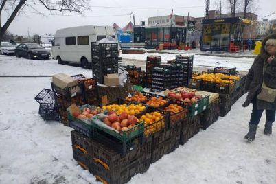 v-zaporozhe-vozle-dorogi-prodavali-myaso-i-frukty.jpg