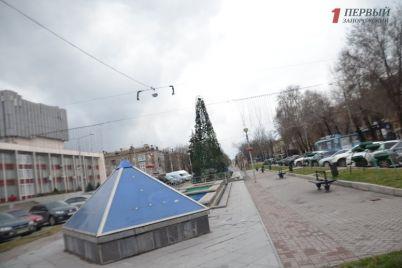v-zaporozhe-vydelyat-15-milliona-griven-na-novye-girlyandy-i-novogodnyuyu-illyuminacziyu-na-bulvare-shevchenko.jpg