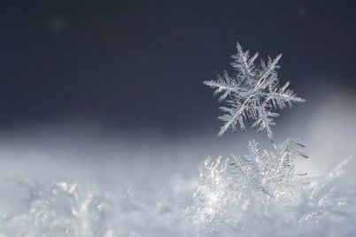v-zaporozhe-vypal-neobychnyj-sneg-video.jpg