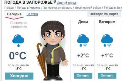 v-zaporozhe-vypal-sneg-v-koncze-marta-kakoj-pogody-ozhidat-dalshe-foto.jpg