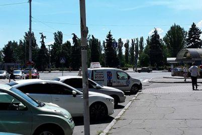 v-zaporozhe-vypisali-shtraf-policzejskim-za-parkovku-s-narusheniem-pdd-foto.jpg