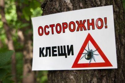 v-zaporozhe-za-poslednie-tri-nedeli-bolee-60-chelovek-obratilis-v-bolniczy-s-ukusami-kleshhej.jpg