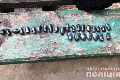 v-zaporozhe-zaderzhali-yunuyu-raznoschiczu-smerti-foto.jpg