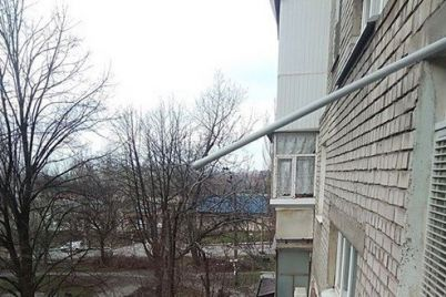 v-zaporozhe-zastrelili-sobaku-kotoraya-pokusala-muzhchinu-i-patrulnogo.jpg