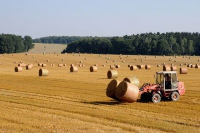 v-zaporozhskoj-oblasti-agropredpriyatie-nedoplatilo-7-millionov-griven-nalogov.jpg