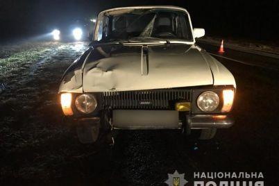 v-zaporozhskoj-oblasti-avtomobil-dognal-peshehoda-i-naehal-na-nego.jpg