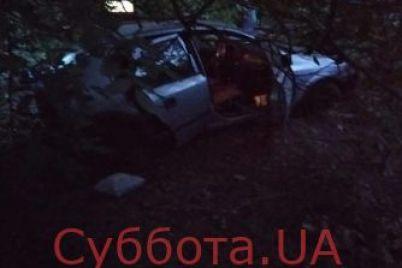 v-zaporozhskoj-oblasti-avtomobil-vyehal-na-obochinu-i-sbil-dvoih-lyudej-foto.jpg
