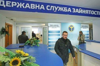 v-zaporozhskoj-oblasti-bezraboticza-idet-na-spad-na-odno-rabochee-mesto-pretendovalo-8-chelovek.jpg