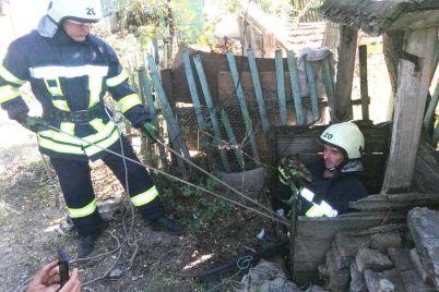v-zaporozhskoj-oblasti-bojczy-gschs-spasli-kotenka-kotoryj-upal-v-10-metrovyj-kolodecz-foto.jpg