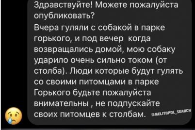 v-zaporozhskoj-oblasti-domashnyuyu-sobaku-udarilo-tokom-v-parke.png