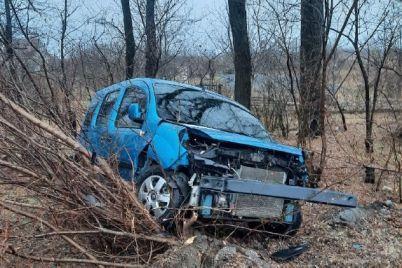 v-zaporozhskoj-oblasti-dva-avto-sleteli-s-trassy-foto.jpg