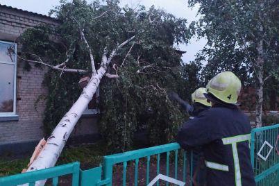 v-zaporozhskoj-oblasti-iz-za-uragana-razrushena-krysha-shkoly-368-domov-ostalis-bez-elektroenergii-fotoreportazh.jpg