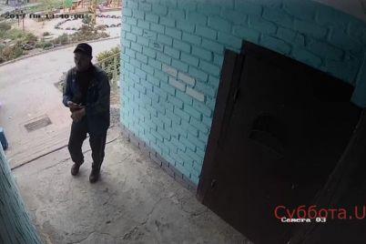 v-zaporozhskoj-oblasti-kamera-videonablyudeniya-zapechatlela-vora-video.jpg
