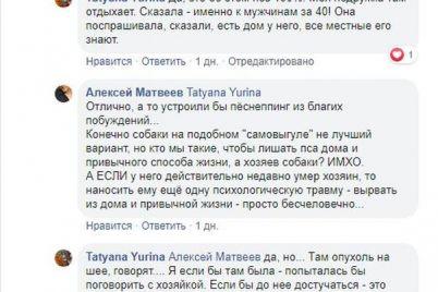 v-zaporozhskoj-oblasti-na-morskom-poberezhe-zhivet-pes-kotoryj-kazhdyj-den-ishhet-umershego-hozyaina.jpg