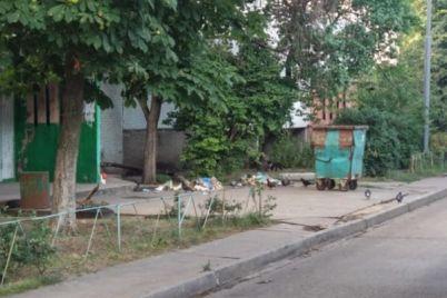 v-zaporozhskoj-oblasti-na-zhenshhinu-dvornika-upal-perepolnennyj-musornyj-bak-postradavshaya-gospitalizirovana-foto.jpg