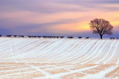 v-zaporozhskoj-oblasti-nachalas-zima-foto.jpg