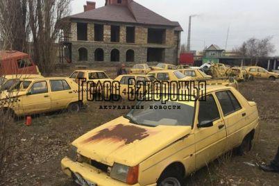 v-zaporozhskoj-oblasti-nashli-kladbishhe-staryh-avtomobilej-zaz-foto.jpg