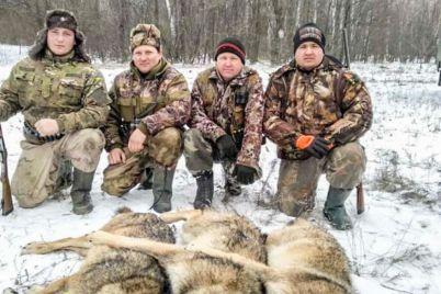 v-zaporozhskoj-oblasti-ohotniki-zastrelili-stayu-volkov-foto.jpg