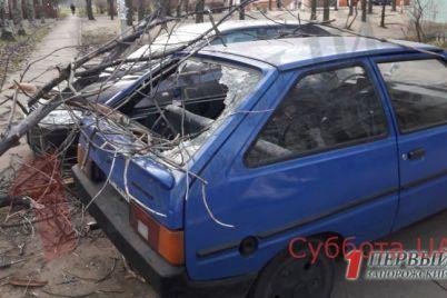 v-zaporozhskoj-oblasti-ozhidaetsya-shkvalnyj-veter-v-nekotoryh-gorodah-uzhe-nablyudayutsya-posledstviya-foto.jpg