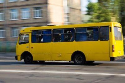 v-zaporozhskoj-oblasti-passazhir-ehal-v-marshrutke-lyozha-video.jpg