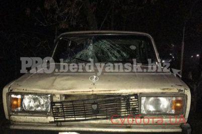 v-zaporozhskoj-oblasti-pod-kolesami-avto-pogib-molodoj-paren-foto.jpg