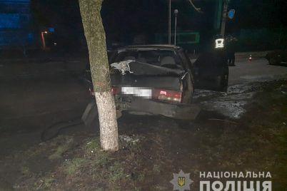 v-zaporozhskoj-oblasti-pod-kolesami-avto-pogibla-zhenshhina-voditel-byl-pyan-foto.jpg