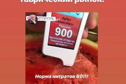 v-zaporozhskoj-oblasti-pokupateli-na-rynke-proverili-tovary-na-nitraty-foto.jpg