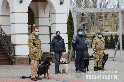 v-zaporozhskoj-oblasti-policzejskie-pereshli-na-usilennyj-rezhim-sluzhby-s-chem-eto-svyazano.jpg