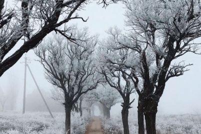 v-zaporozhskoj-oblasti-poyavilsya-snezhnyj-namek-na-zimu-foto.jpg