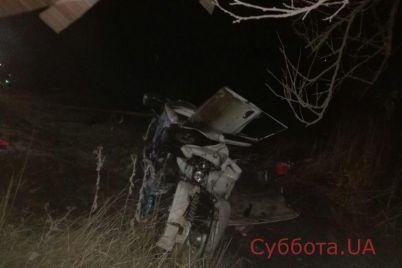 v-zaporozhskoj-oblasti-proizoshla-zhutkaya-avtokatastrofa-podrobnosti-foto.jpg