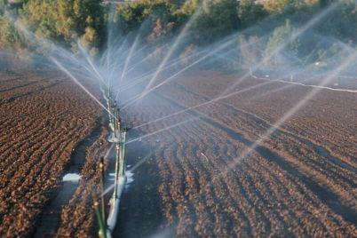 v-zaporozhskoj-oblasti-prokuratura-otsudila-u-agrariev-obuekt-eko-naznacheniya-za-16-millionov-griven.jpg
