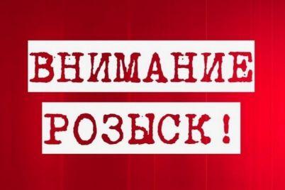 v-zaporozhskoj-oblasti-propal-podrostok-s-osoboj-primetoj-foto.jpg