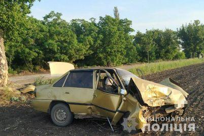 v-zaporozhskoj-oblasti-pyanyj-voditel-daewoo-vrezalsya-v-derevo-pogibli-dva-passazhira.jpg