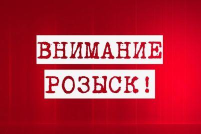 v-zaporozhskoj-oblasti-razyskivayut-gruppu-vorov-popavshih-pod-kamery-videonablyudeniya-video.jpg