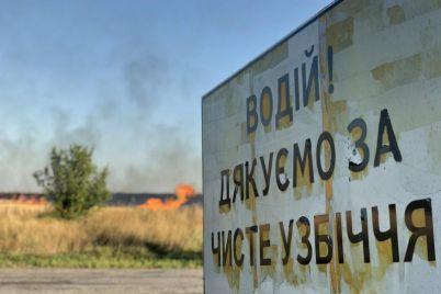 v-zaporozhskoj-oblasti-silno-polyhalo-pole.jpg