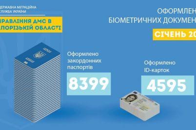 v-zaporozhskoj-oblasti-sohranyaetsya-spros-na-biometricheskie-zagranpasporta.jpg