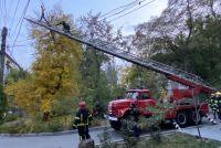 v-zaporozhskoj-oblasti-spasateli-neskolko-chasov-snimali-muzhchinu-s-dereva.jpg