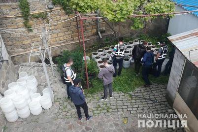 v-zaporozhskoj-oblasti-u-zhitelya-berdyanska-izuyali-narkotiki-na-1-million.jpg