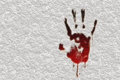 v-zaporozhskoj-oblasti-ubili-mat-troih-detej.jpg