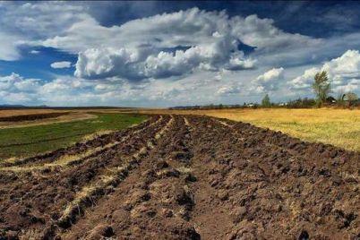 v-zaporozhskoj-oblasti-uchastniki-ato-poluchili-chut-bolee-treh-tysyach-zemelnyh-uchastkov.jpg