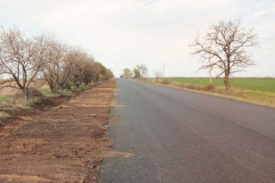 v-zaporozhskoj-oblasti-uchastok-vazhnoj-dorogi-otremontirovali-dosrochno-foto.jpg