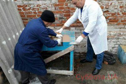 v-zaporozhskoj-oblasti-v-dom-k-muzhchine-probralas-lisa-foto.jpg