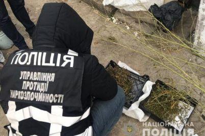 v-zaporozhskoj-oblasti-v-dome-pryatali-narkotiki-na-sorok-tysyach.jpg