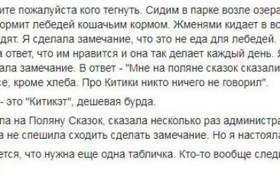 v-zaporozhskoj-oblasti-v-odnom-iz-parkov-lebedi-kushayut-korm-dlya-kotov.jpg