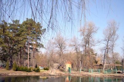 v-zaporozhskoj-oblasti-v-parke-povesilsya-20-letnij-paren.jpg