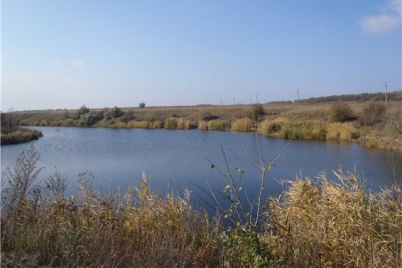 v-zaporozhskoj-oblasti-v-reke-nashli-telo-muzhchiny.jpg