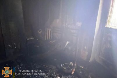 v-zaporozhskoj-oblasti-vo-vremya-pozhara-iz-mnogoetazhki-evakuirovali-detej-i-vzroslyh.jpg