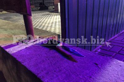 v-zaporozhskoj-oblasti-voennosluzhashhie-ugrozhali-pistoletom-posetitelyam-kafe-foto.jpg