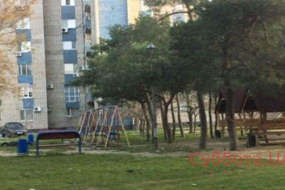 v-zaporozhskoj-oblasti-vozle-detskoj-ploshhadki-povesilsya-podrostok.jpg