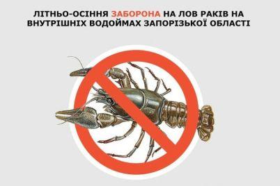 v-zaporozhskoj-oblasti-vstupaet-v-silu-zapret-na-lovlyu-rakov.jpg